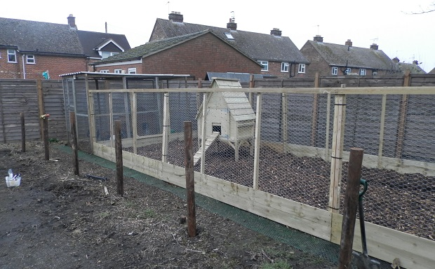 The new chicken run